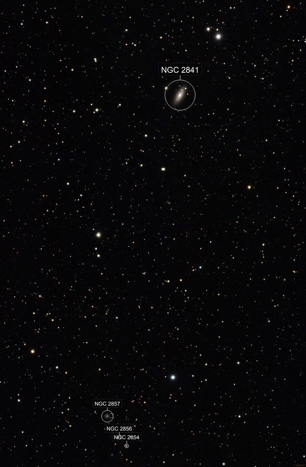 NGC 2841-2857 - Wide Field