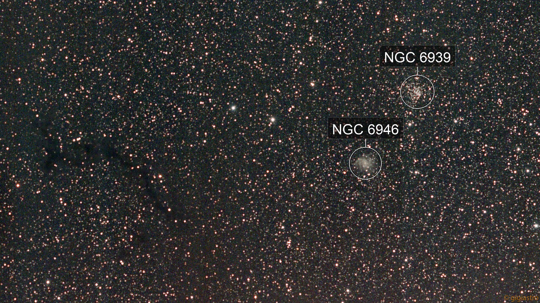 A Seahorse and a Brittle star (Dark nebula B 150 and galaxy NGC 6946)