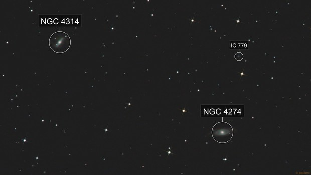 Galaxies NGC 4314 & 4274