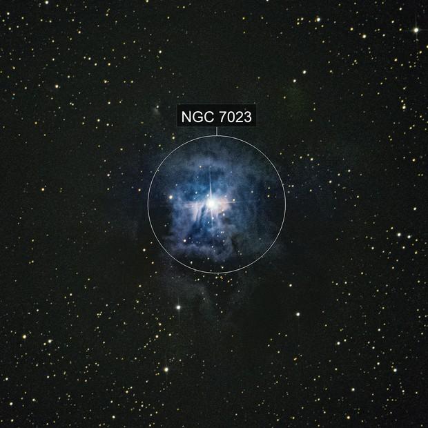 Iris Nebula -NGC7023