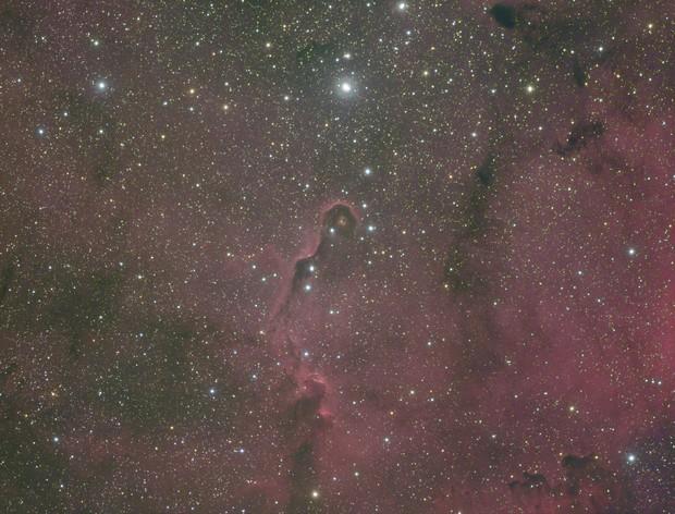 IC1396 L RGB Ha