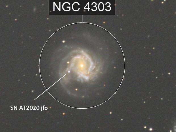 SN AT 2020 jfo
