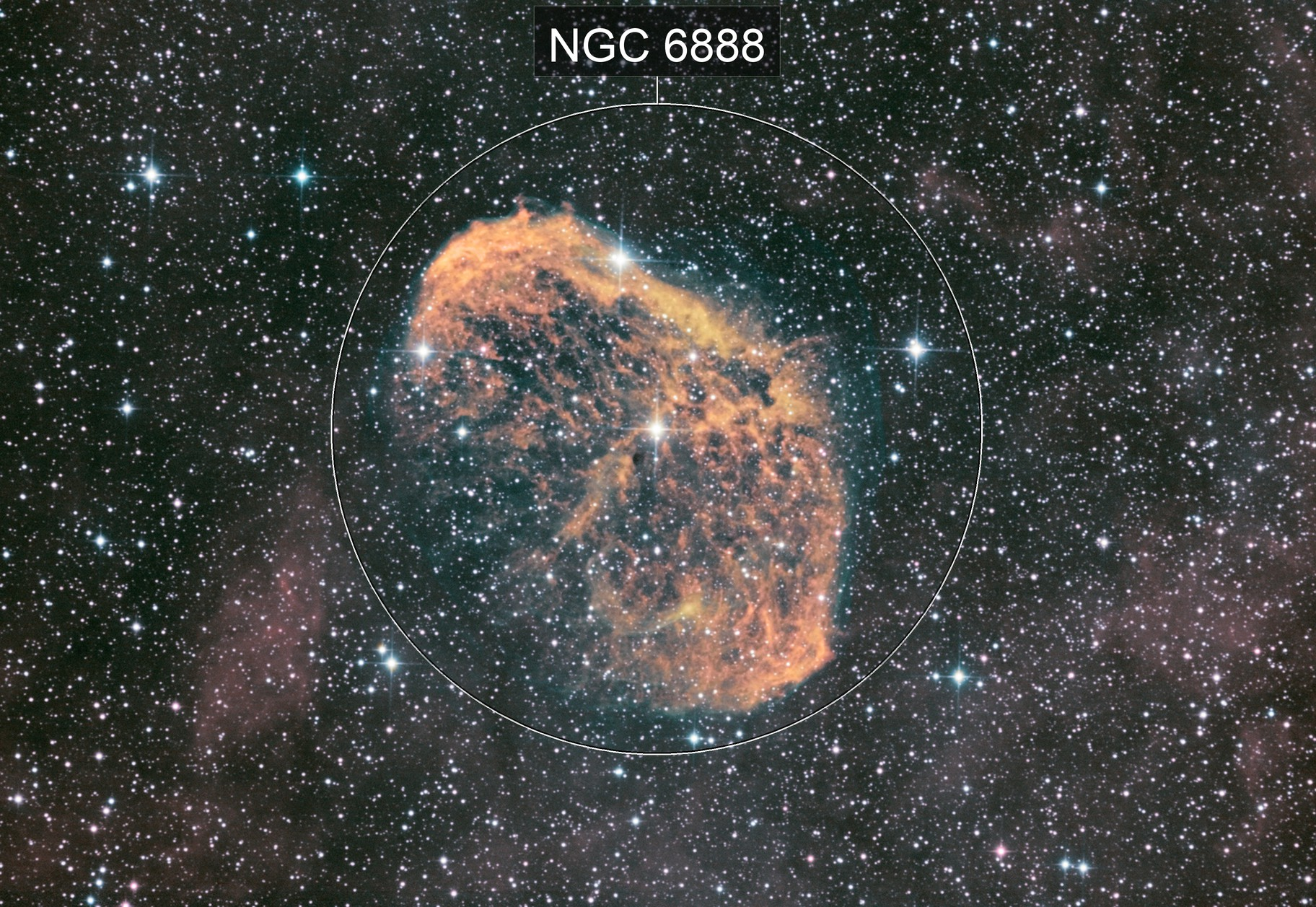 NGC 6888 SHO