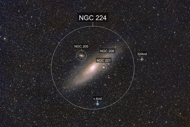 M31 and neighbours