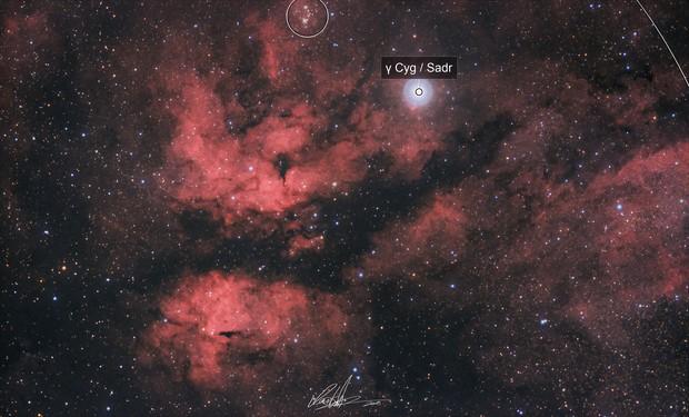 IC1318 | Schmetterlingsnebel |  γ-Cygni-Nebel | Butterfly Nebula