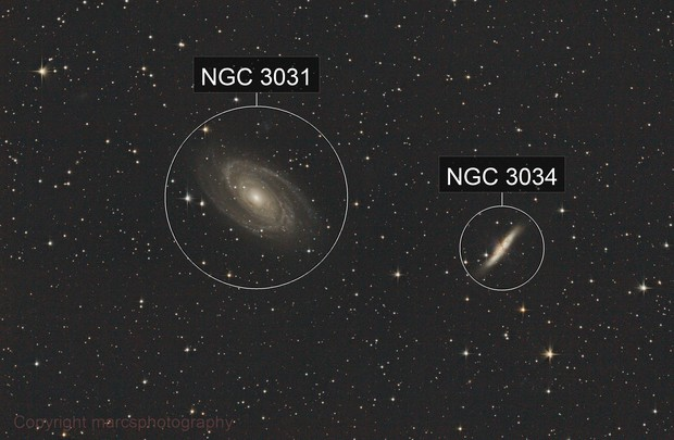 M81 and M81