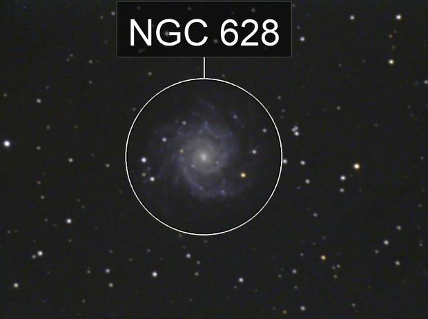 M074 2008