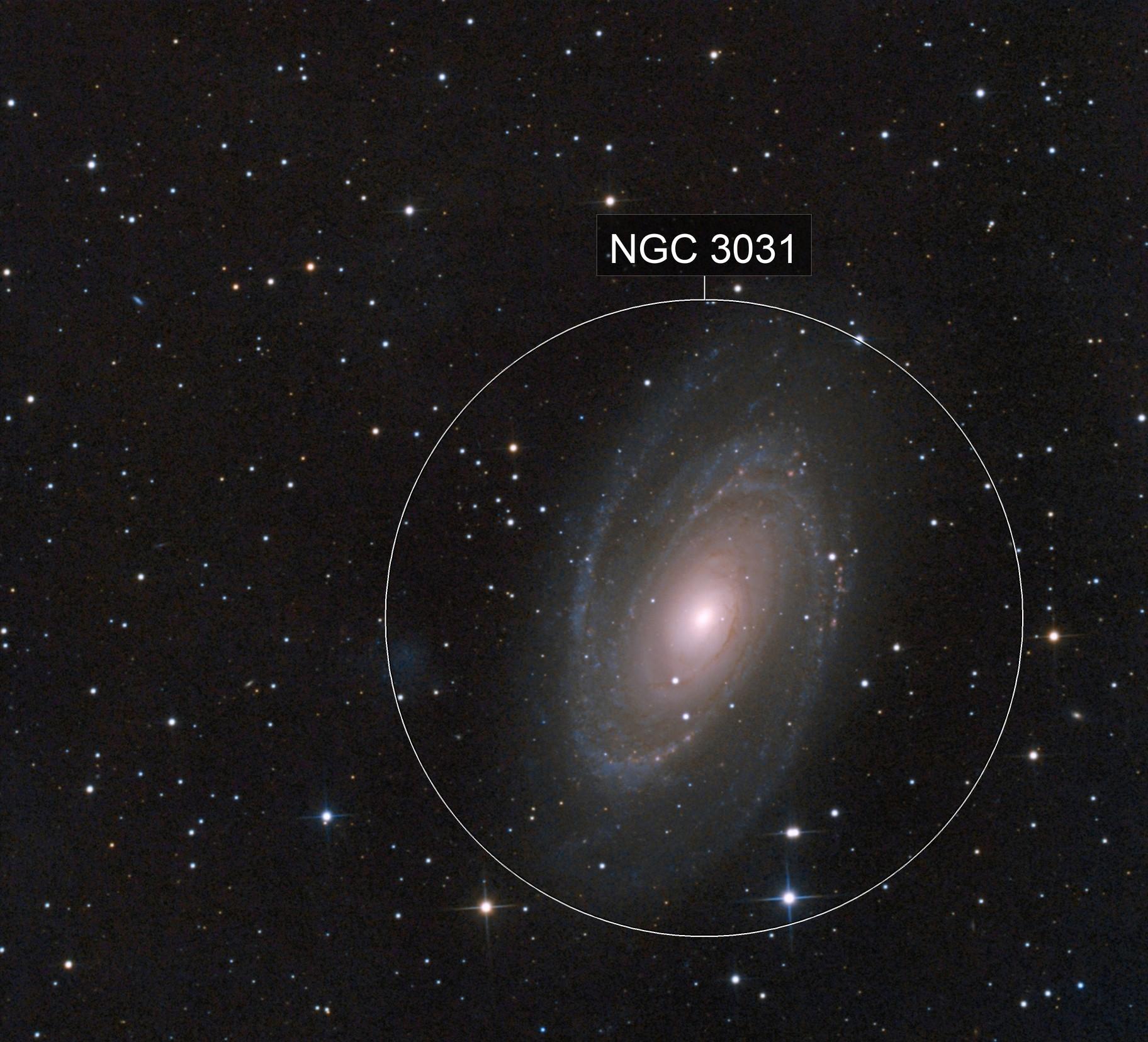 M081 2021