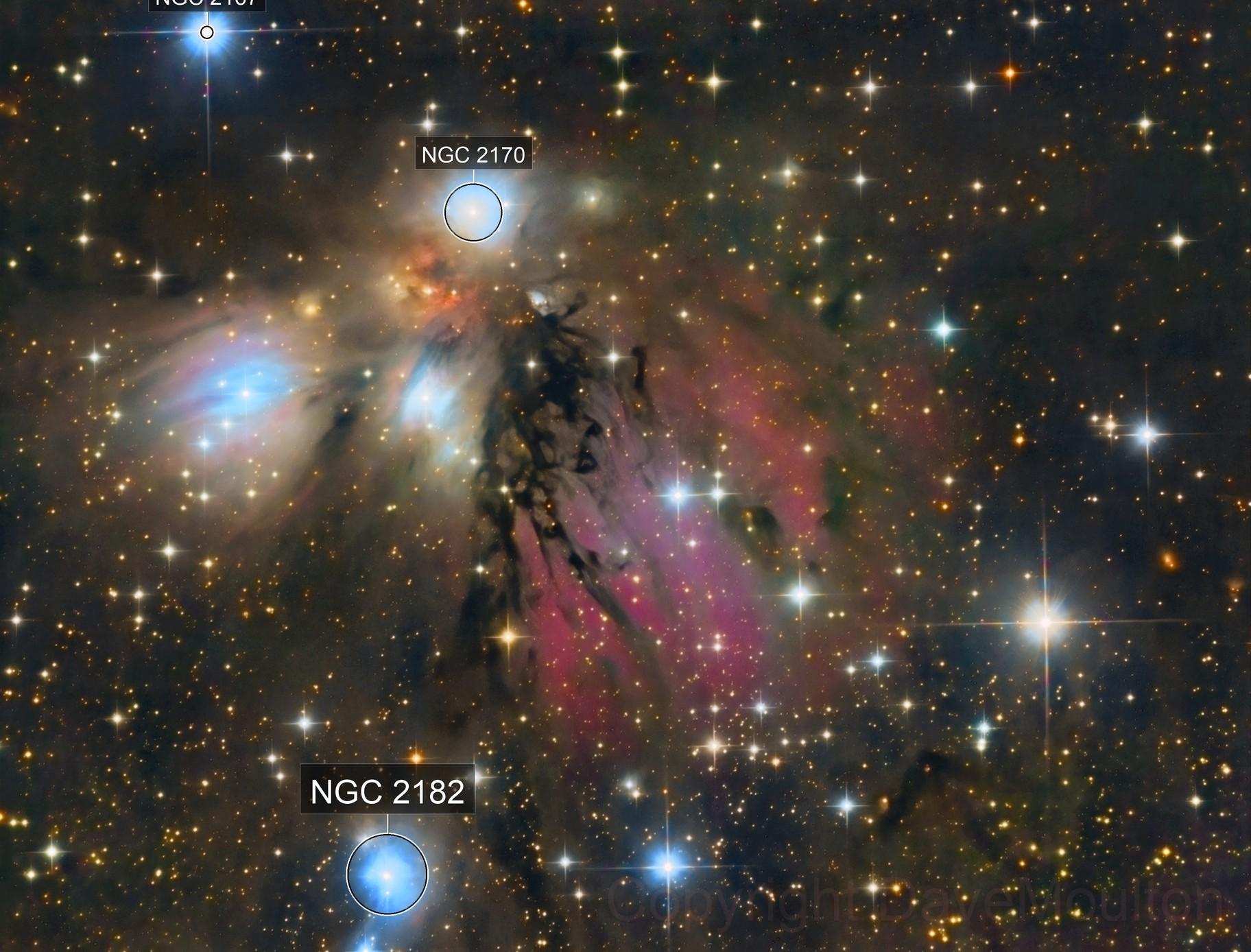 The Angel Nebula NGC2170