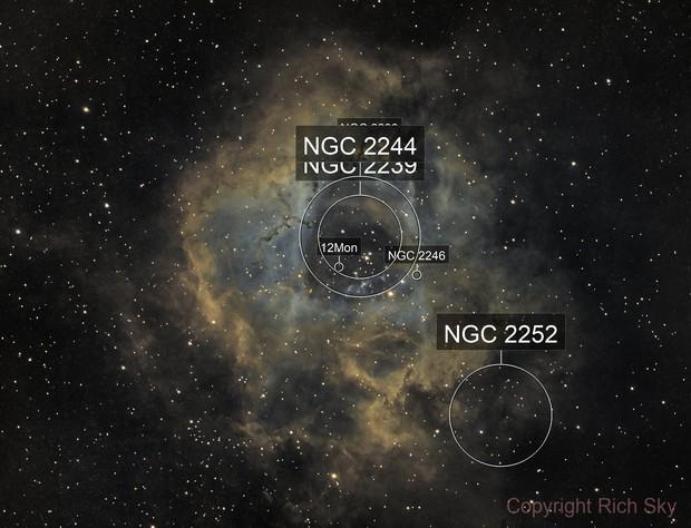 NGC 2244 - Rosette Nebula in HO