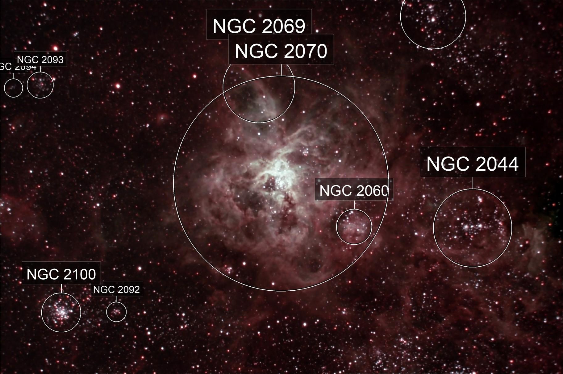 Tarantula Nebula - 30 Doradus