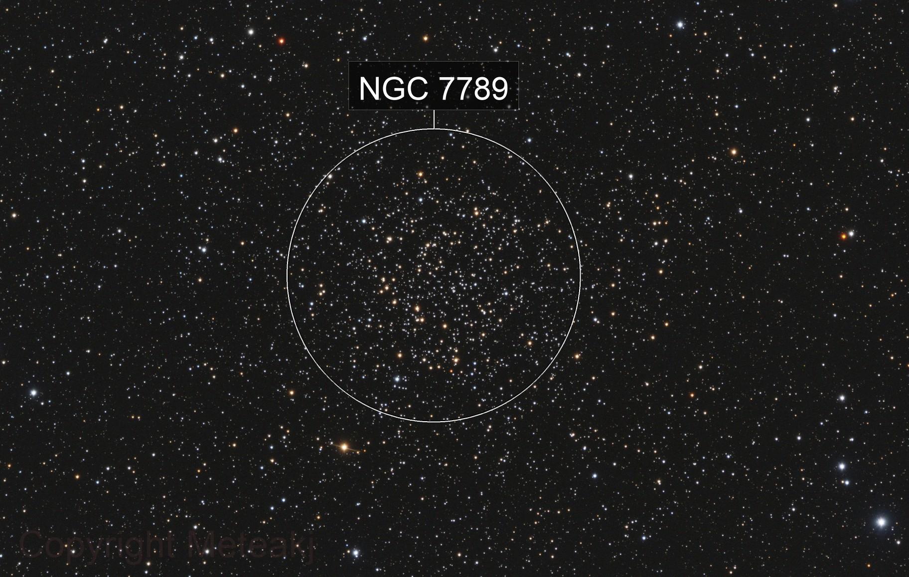 NGC 7789 Caroline's Rose