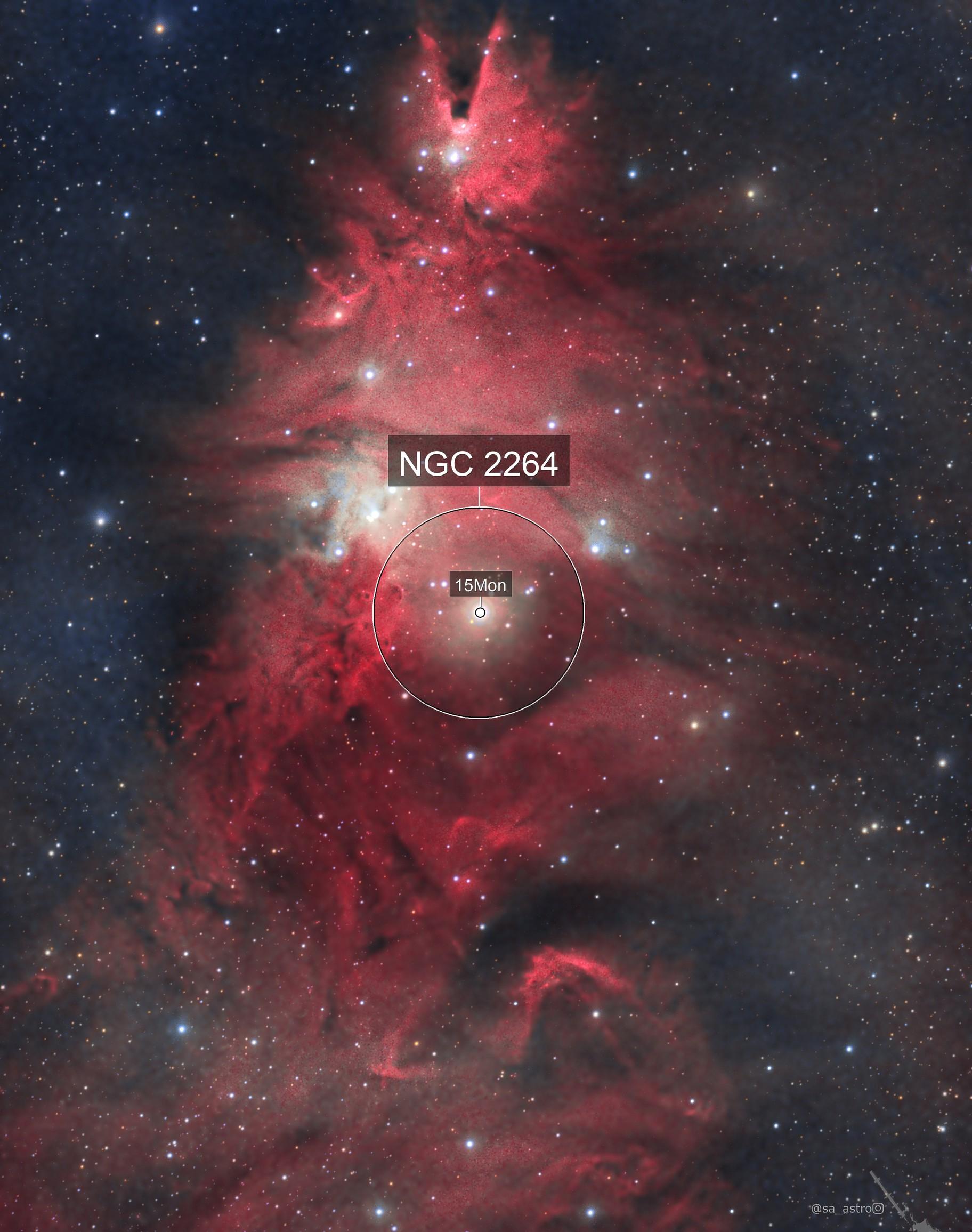 It's always Christmas in Monoceros (NGC 2264)