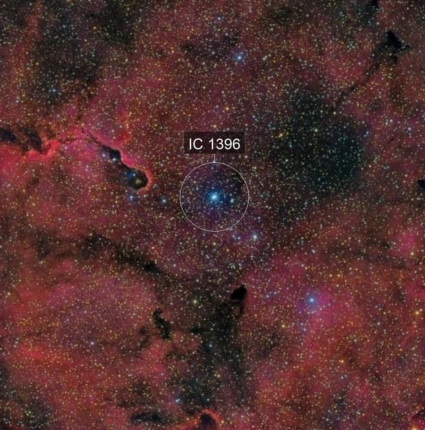 NGC 1396 - La Trompe d'Elephant