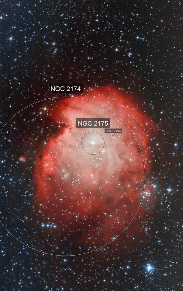 NGC 2174  Monkey Head