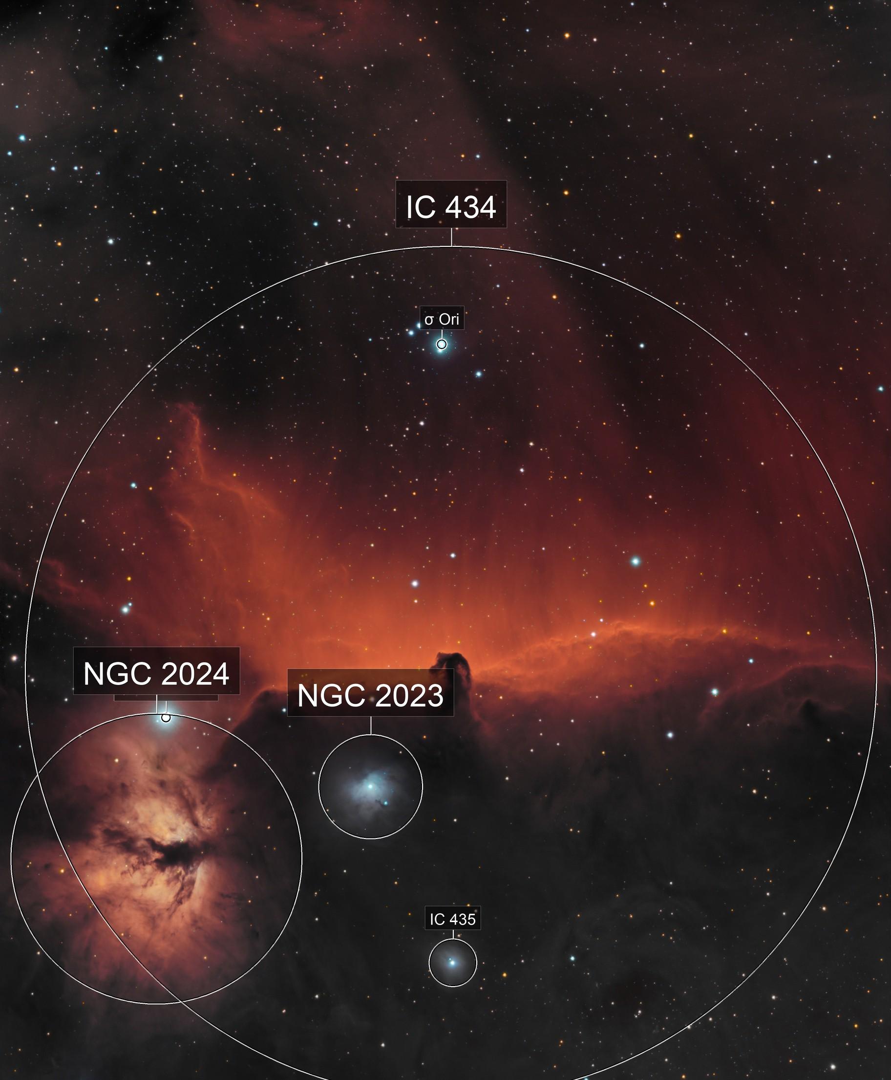 Horsehead Nebula (IC 434) - Narrowband + Blue