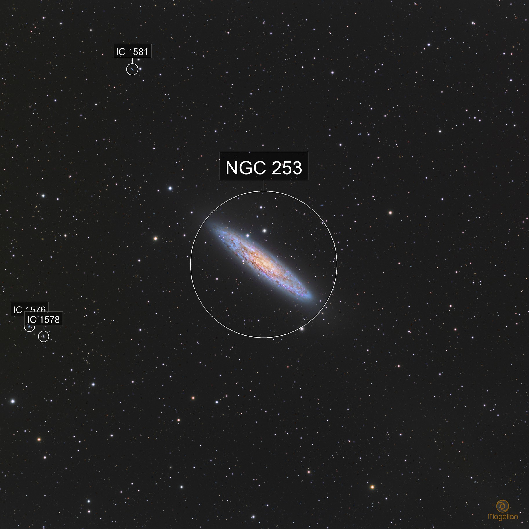 NGC253 Sculptor Galaxy (and many others in background)