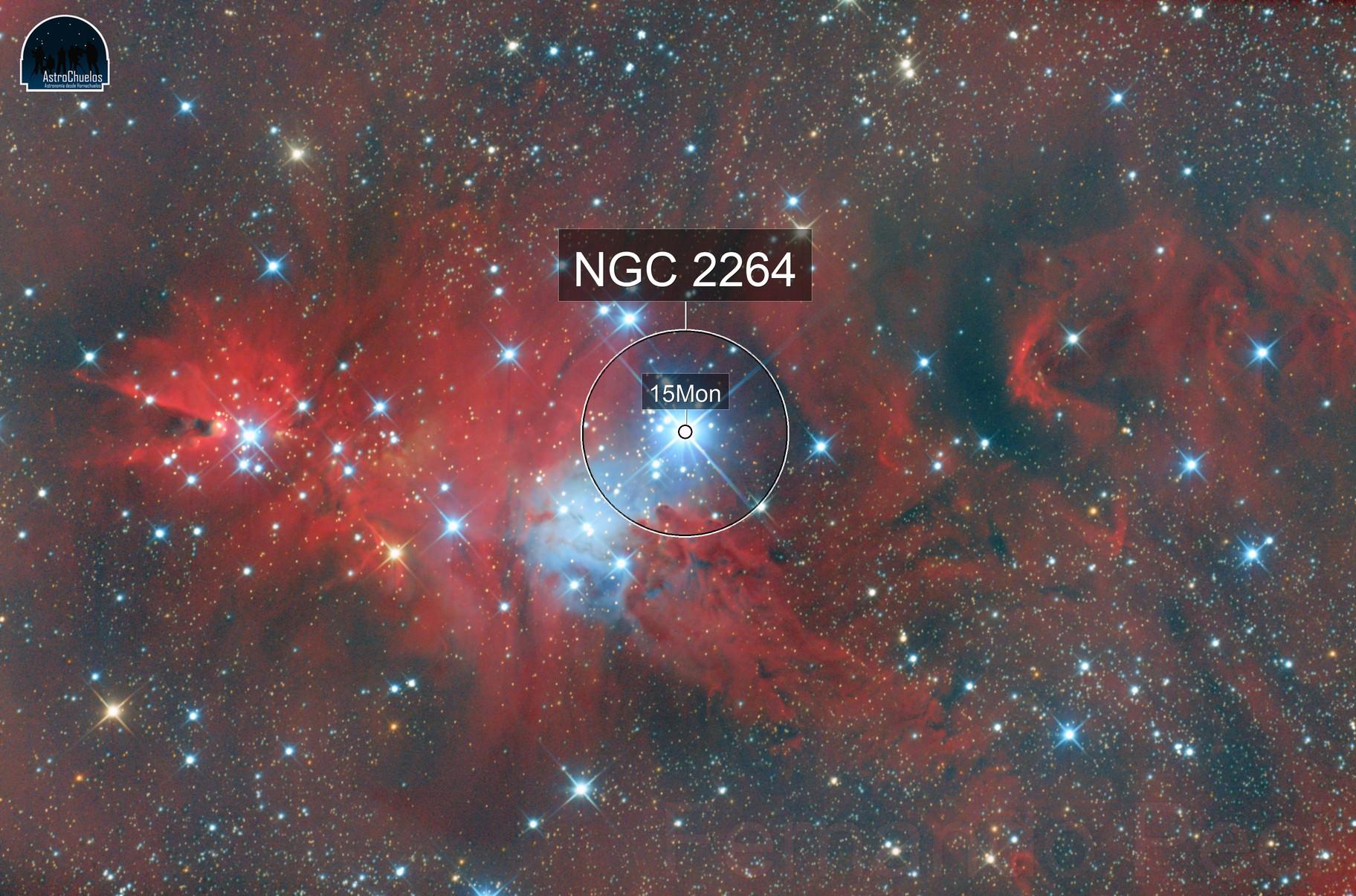 NGC2264 Christmas Tree
