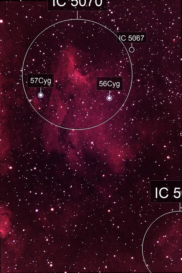 Pelican Nebula (IC 5070) on 35mm Film