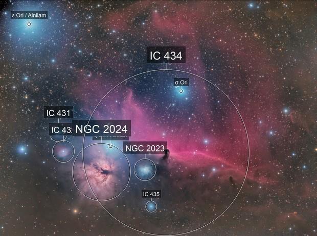 IC434,NGC2024