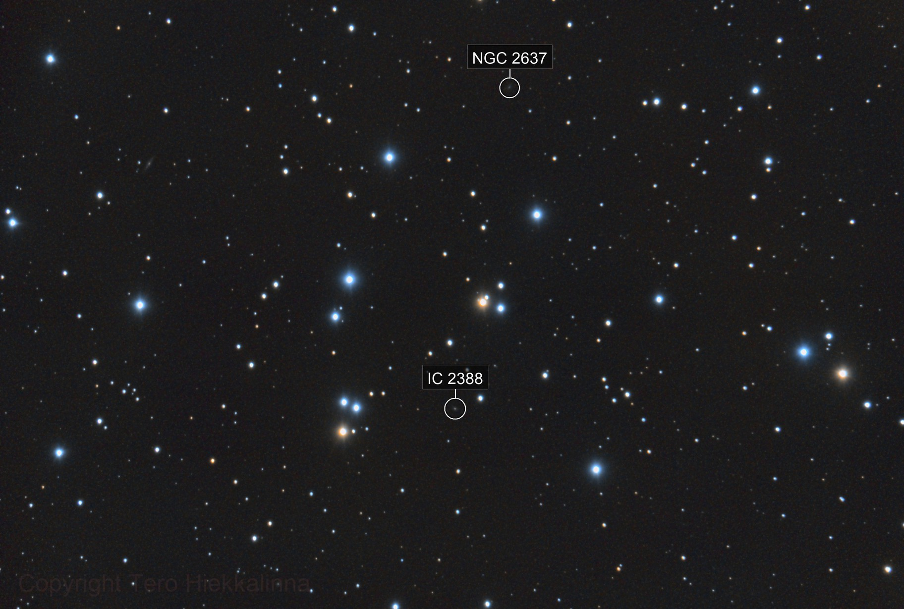 The Beehive Cluster - Messier 44