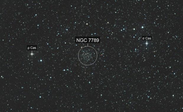 NGC 7789 - Amas de la rose Caroline