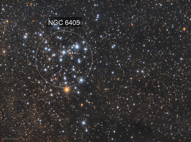 M6 - Butterfly Cluster