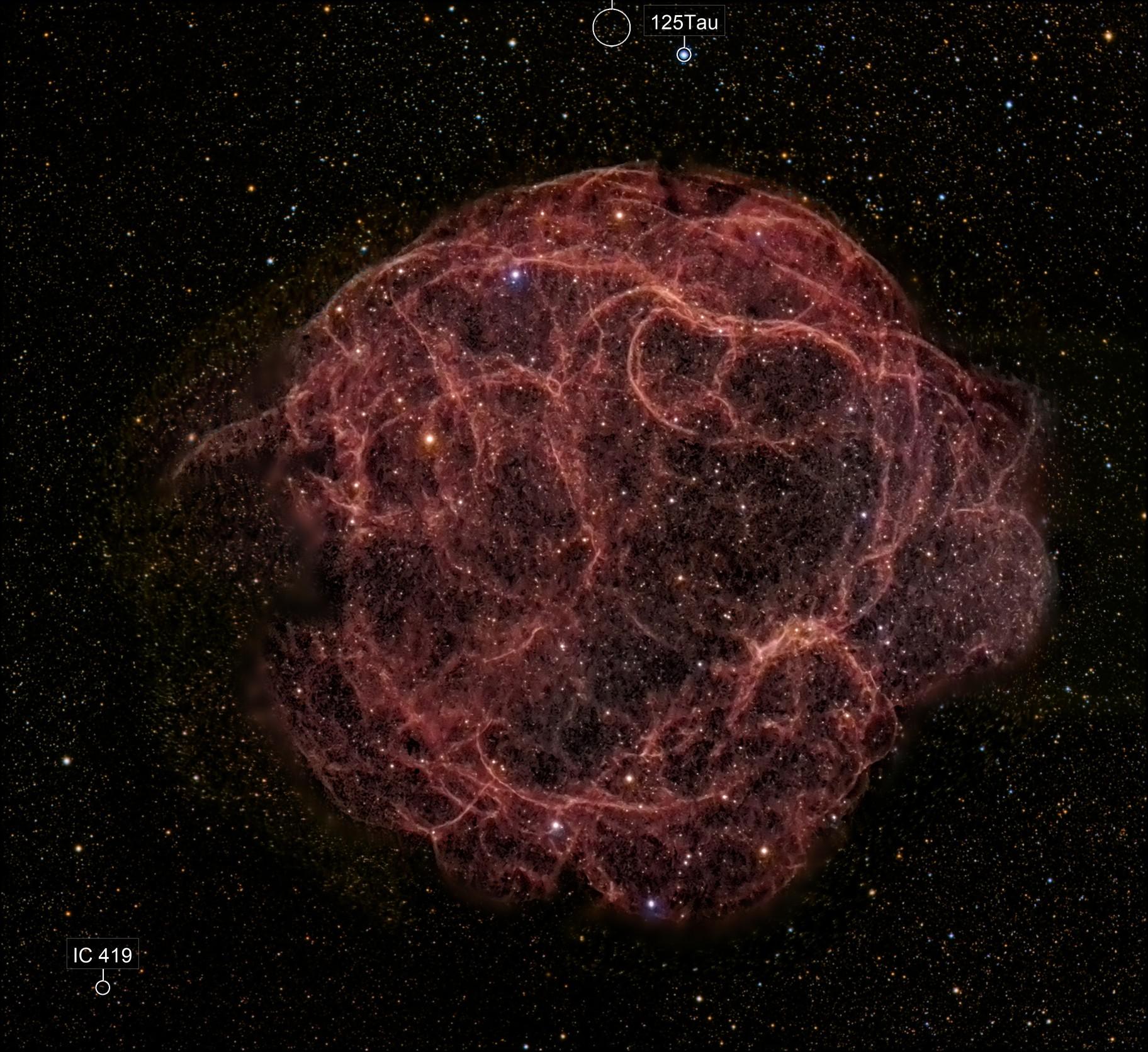 Sh2-240: Spaghetti Nebula