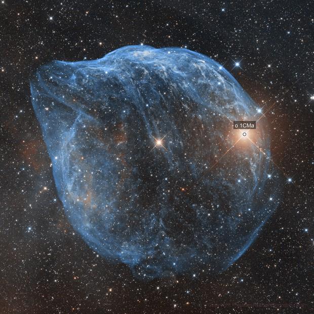 Sh2-308 Dophin Head Nebula