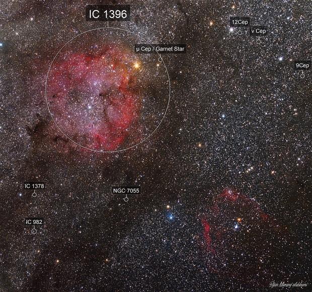 IC1396 nebula, FLYING BAT nebula (sh2_129)