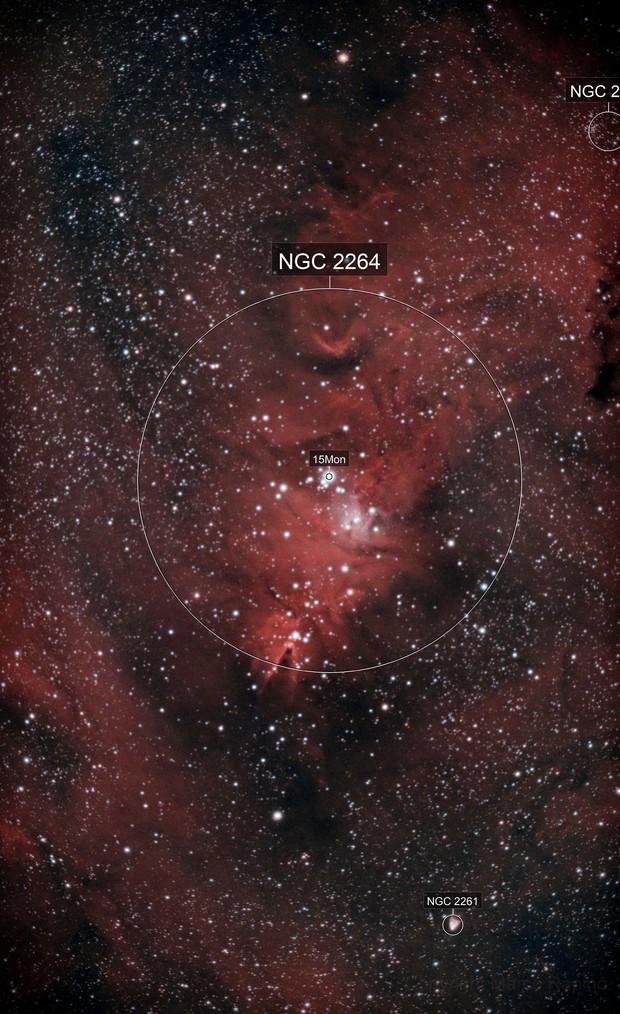 NGC 2264 - Cone and Christmas Tree Nebulae