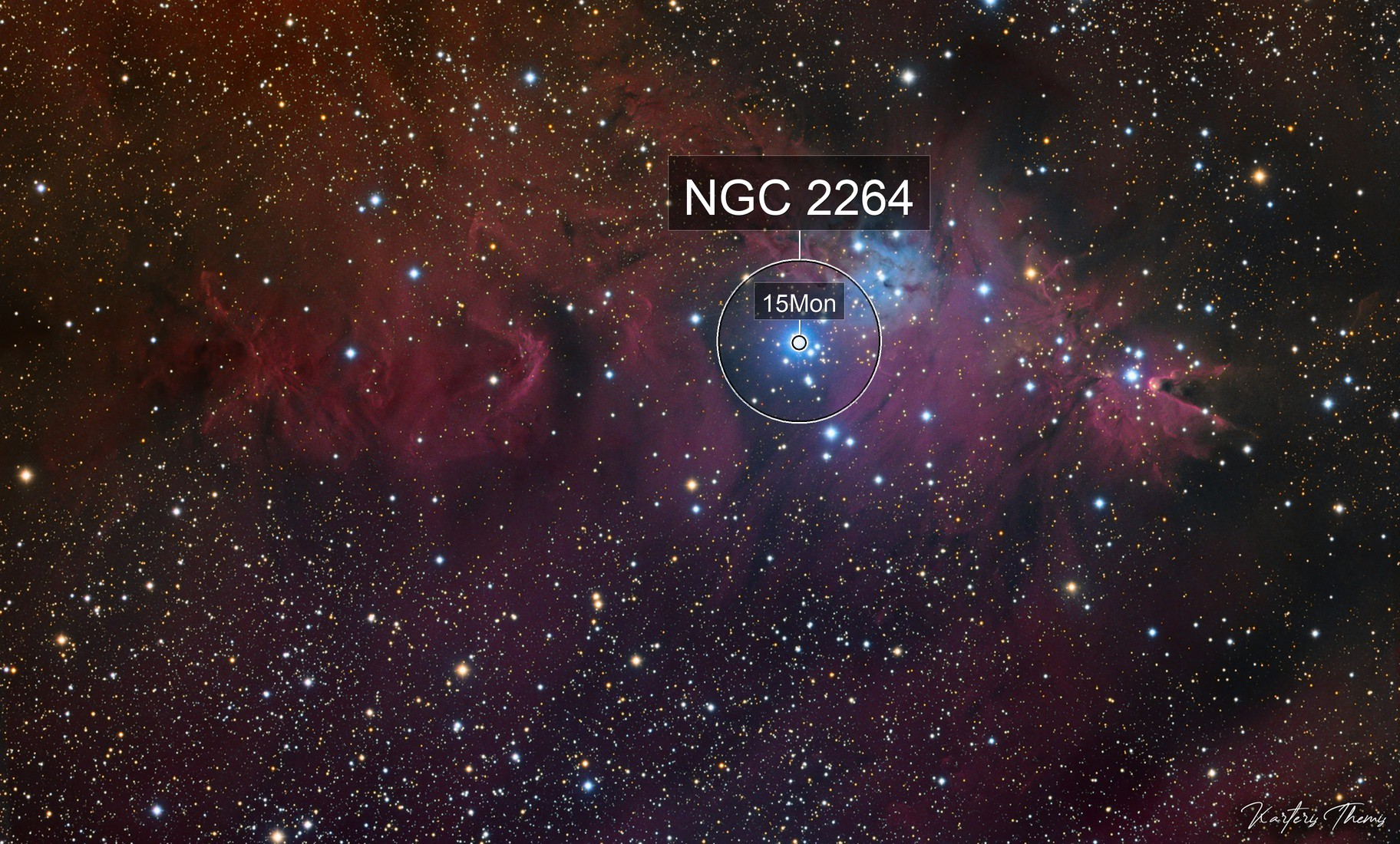 Ngc2264 Cone & Christmas & Fox Fur Nebulas Halrgb