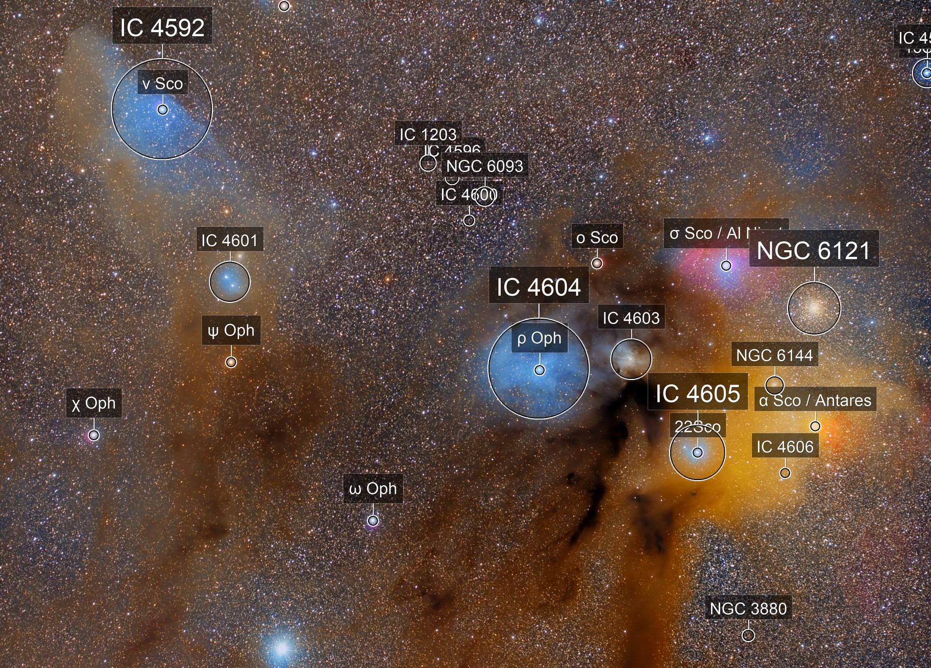 RHO OPHIUCUS AND THE BLUE HORSE HEAD REGION