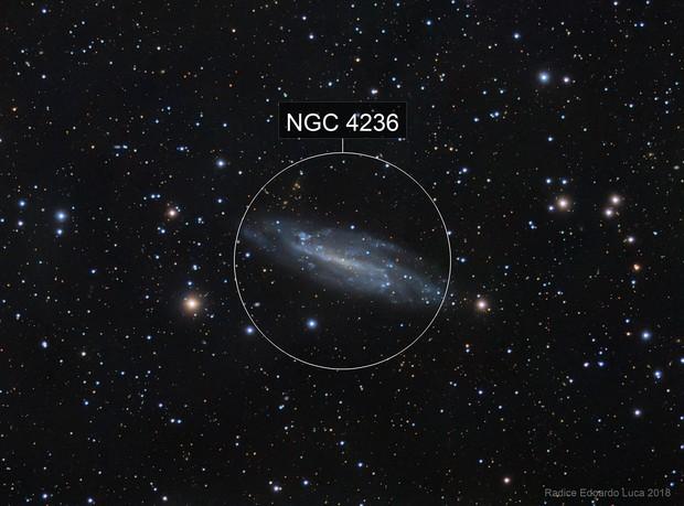 NGC 4236: A Caldwell Galaxy