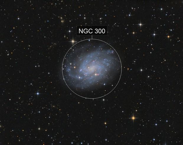 NGC 300 Galaxy