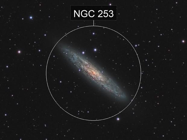 NGC 253 Sculptur Galaxy (crop)