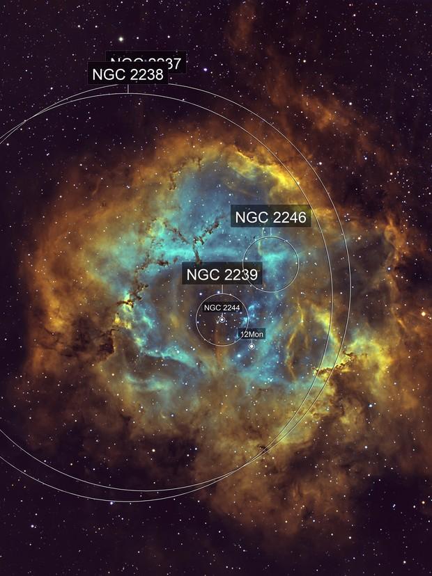 Rosette nebula (Caldwell 49) HST Palette