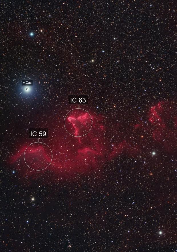 IC 59 and IC 63