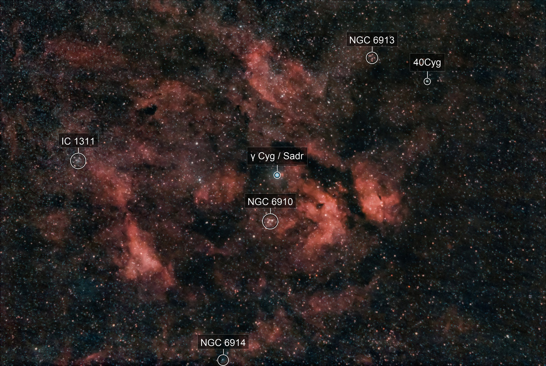 Sadr Region with Butterfly Nebula