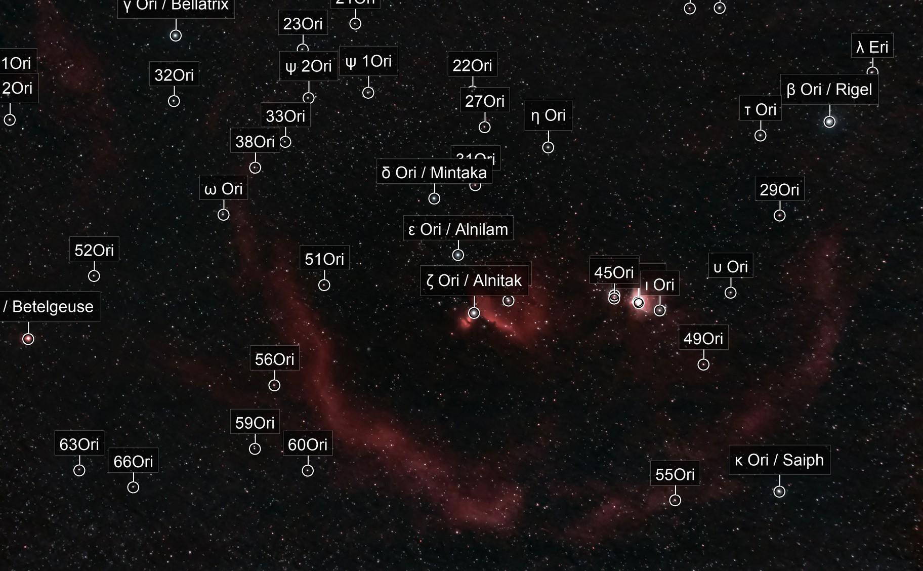 Orion Wide Field