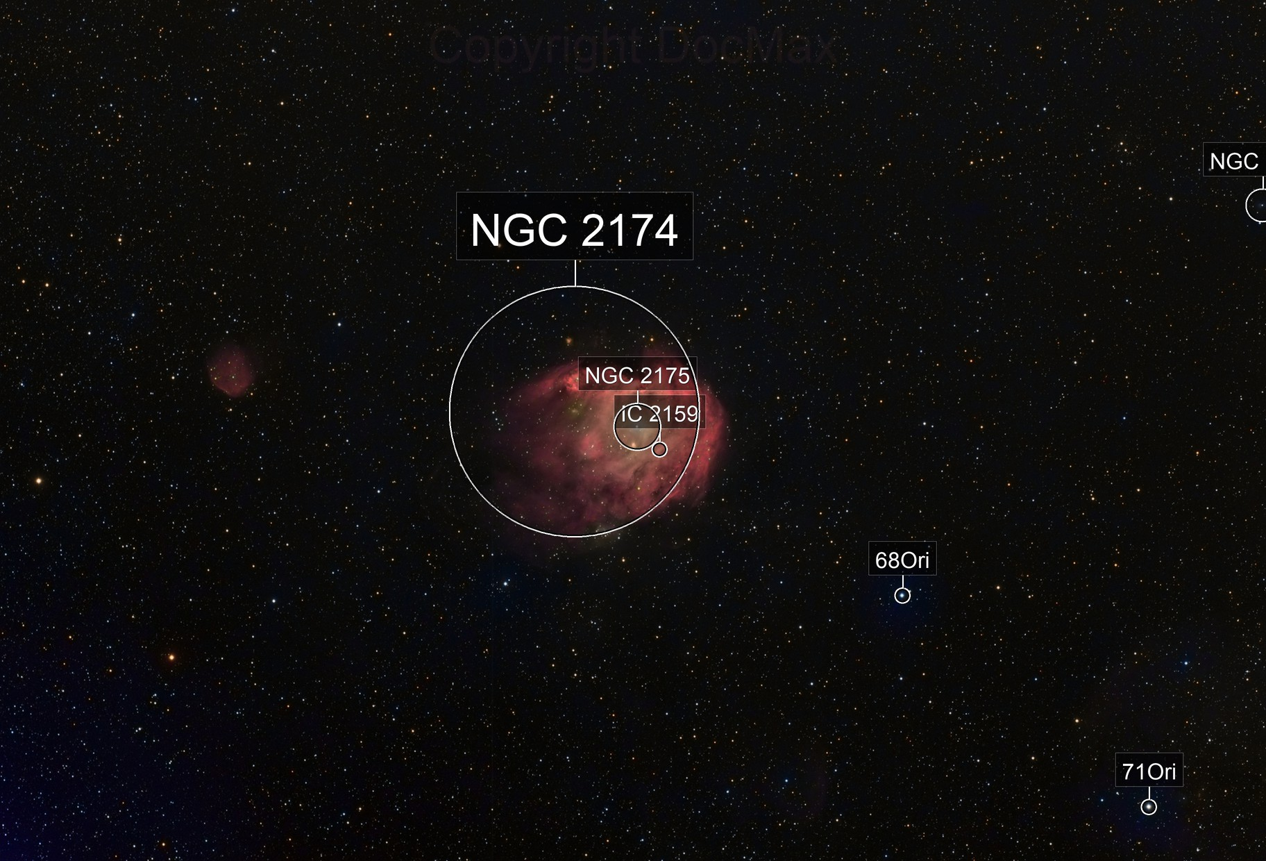 ngc2174 - The Monkey Head Nebula