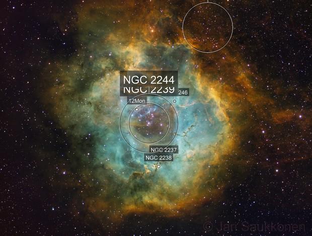 Rosette Nebula in SHO