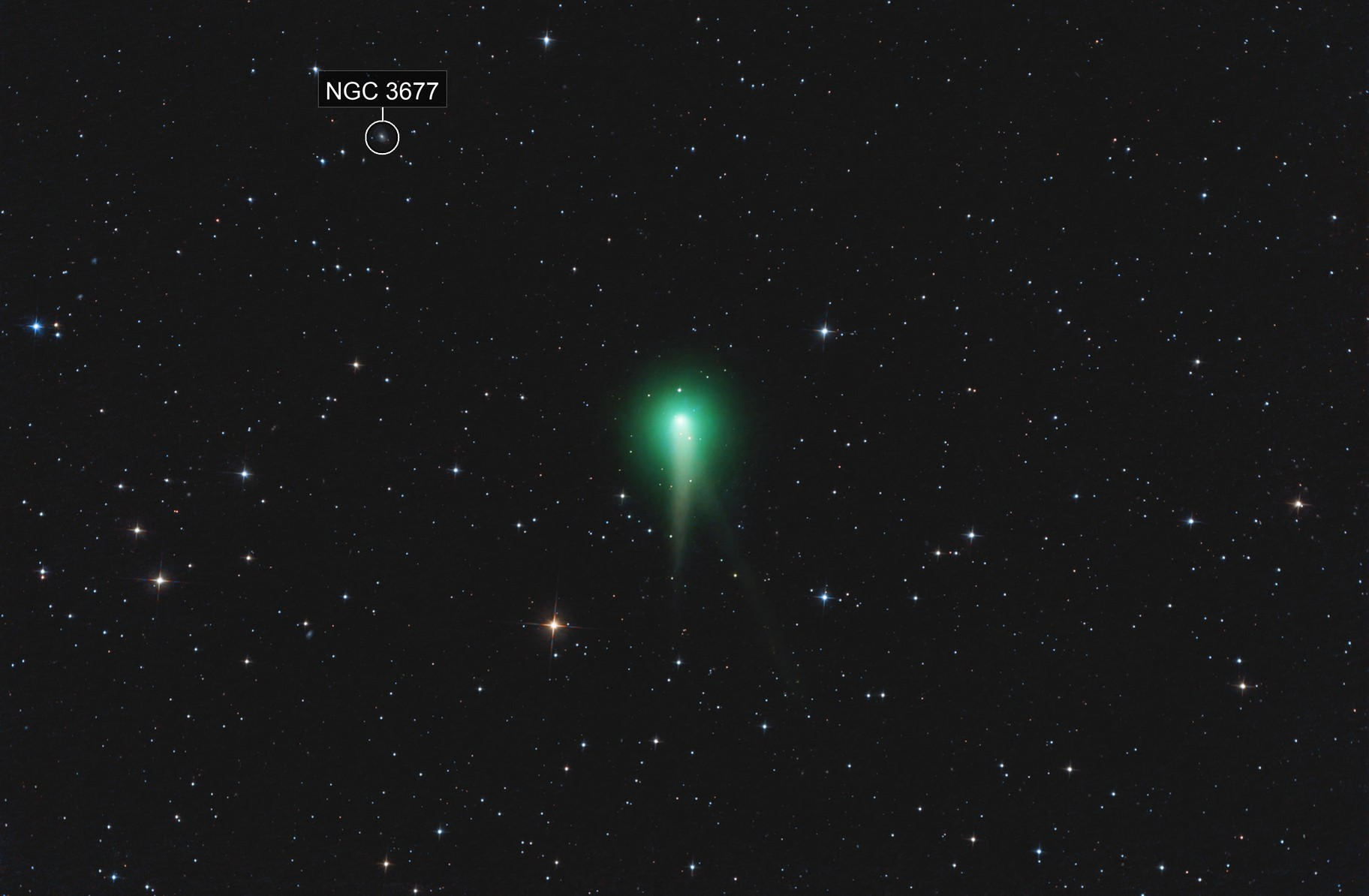 Comet Panstarrs 2012/K1