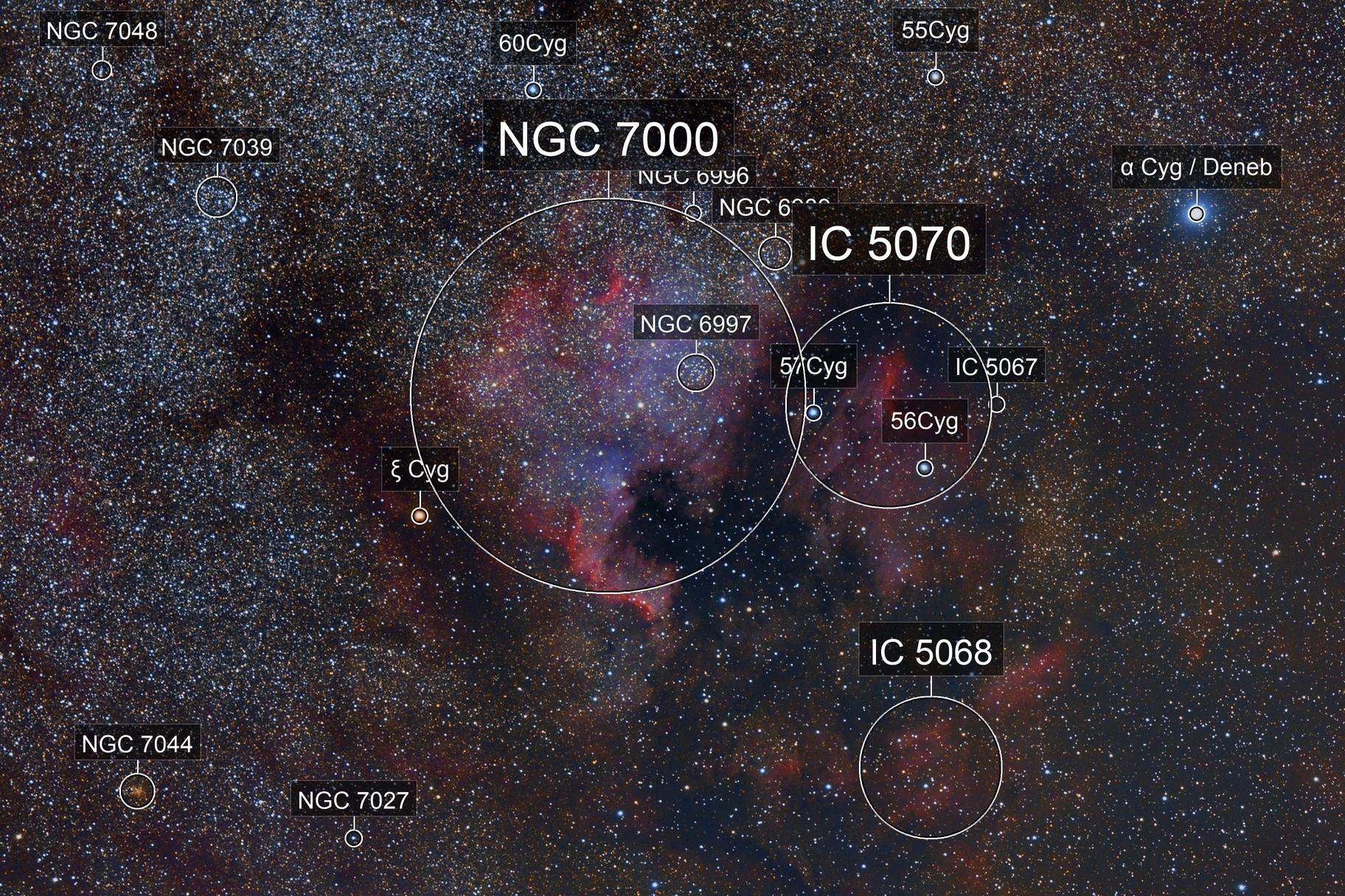 North American Nebula (NGC 7000)