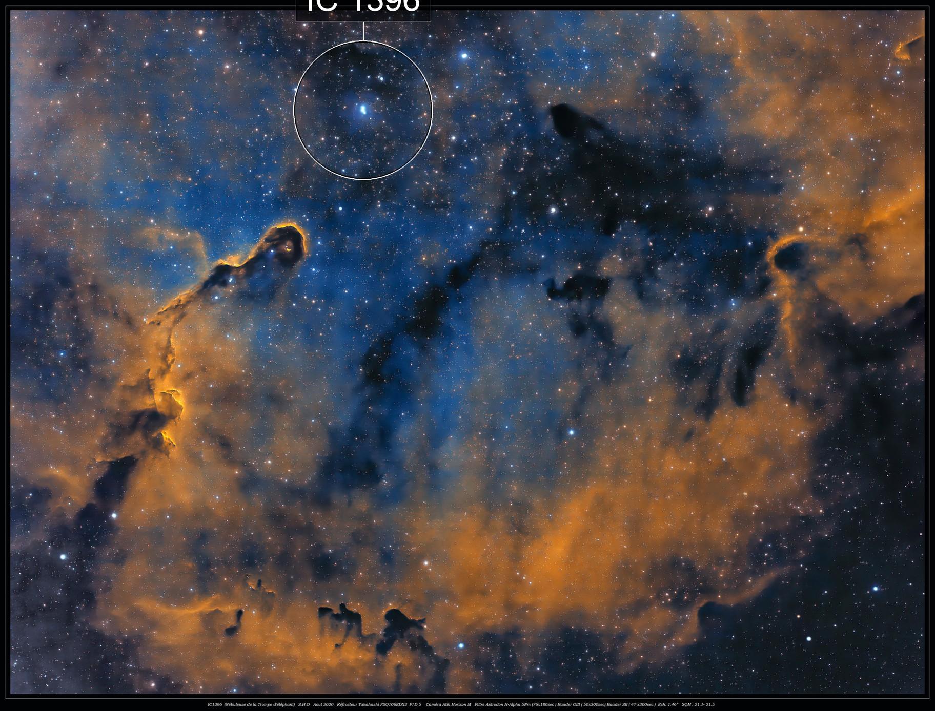 """IC1396 """"Elephant's Trunk Nebula"""" ( Aug 2020)"""