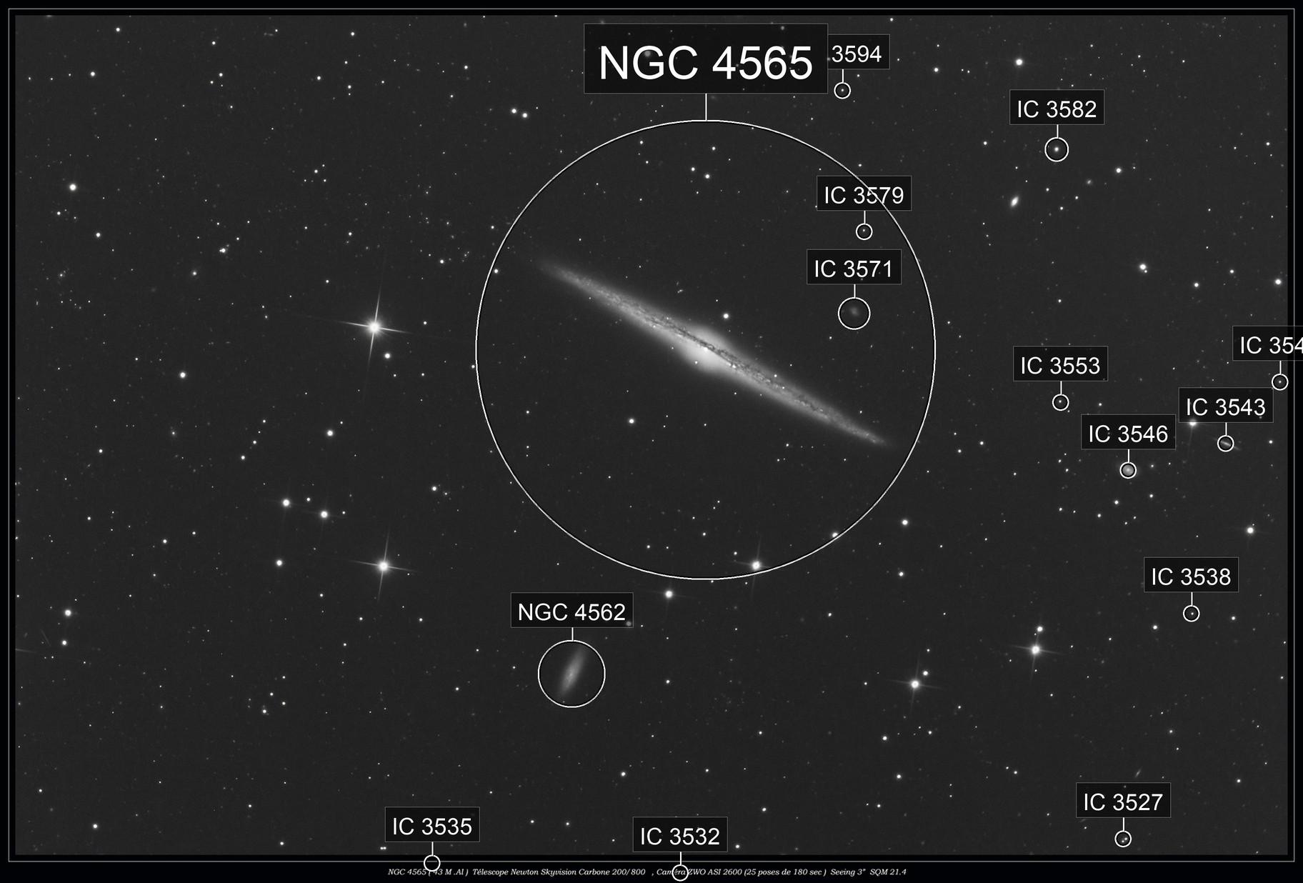 NGC 4565 ( Avril 2021)