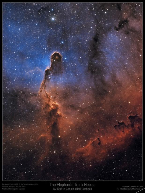 IC 1396 Elephant's Trunk Nebula (Narrowband)