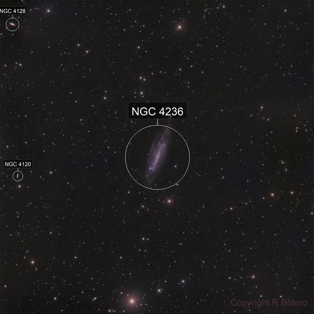 NGC 4236 - Caldwell 3 - LRGB