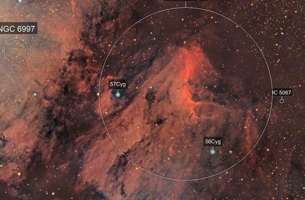 Pelican Nebula (IC 5070, LRGB)