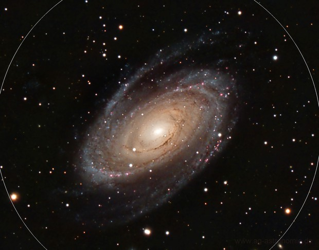 Bode's Galaxy (Messier 81)